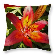Red And Orange Lilly In The Garden Throw Pillow