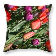 Red And Purple Tulips Throw Pillow