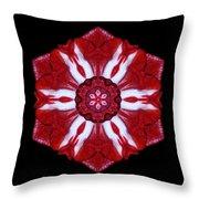 Red And White Amaryllis Iv Flower Mandala Throw Pillow