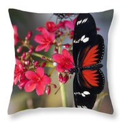 Red And White Longwing Butterflies  Throw Pillow