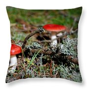 Red And White Mushrooms Throw Pillow