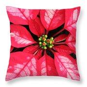 Red And White Poinsettia Throw Pillow
