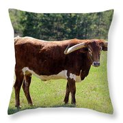 Red And White Texas Longhorn Bull Throw Pillow