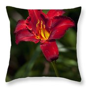 Red And Yellow Daylily  Throw Pillow