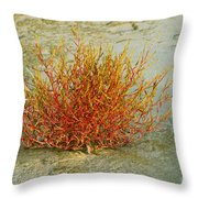 Red And Yellow Desert Color Throw Pillow