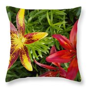 Red And Yellow Lilly Flowers In The Garden Throw Pillow