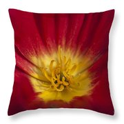 Red And Yellow Poppy 1 Throw Pillow