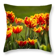 Red And Yellow Tulips II Throw Pillow