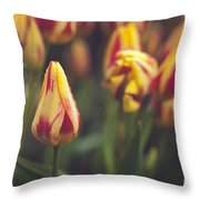 Red And Yellow Tulips Throw Pillow