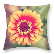 Red And Yellow Zinnia II Throw Pillow