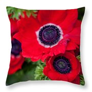 Red Anemone. Flowers Of Holland Throw Pillow