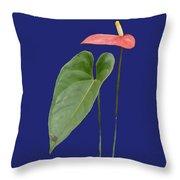 Red Anthurium Greeting Throw Pillow