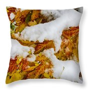 Red Autumn Maple Leaves With Fresh Fallen Snow Throw Pillow