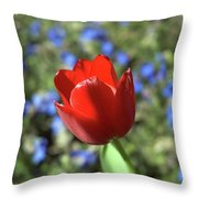 Red Baby Throw Pillow