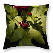 Red Baneberry   #8955 Throw Pillow
