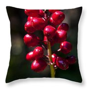 Red Baneberry   #8986 Throw Pillow