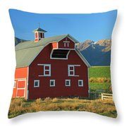 Dn5939-red Barn In The Wallowas Throw Pillow