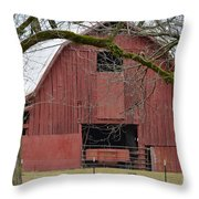Red Barn Series Picture C Throw Pillow
