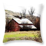 Red Barn Throw Pillow by Steve McKinzie