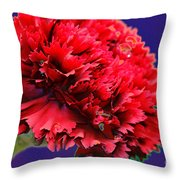 Red Beauty Carnation Throw Pillow