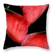 Red Beauty - Heliconia Throw Pillow