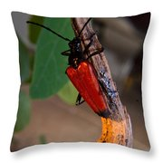 Red Beetle Rising Throw Pillow