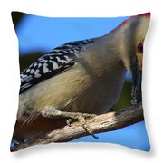 Red-bellied Woodpecker Catching Grub Throw Pillow