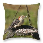 Red Bellied Woodpecker - Melanerpes Carolinus Throw Pillow