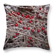 Red Berries Covered In Snow Throw Pillow