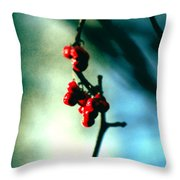 Red Berries On Canvas Throw Pillow