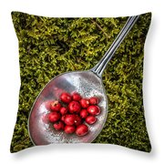 Red Berries Silver Spoon Moss Throw Pillow by Edward Fielding