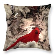 Red Bird In A Snow Covered Tree Throw Pillow