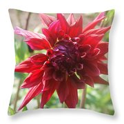 Red Blast Throw Pillow