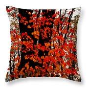 Red Blaze Burst Throw Pillow