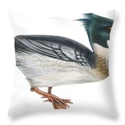 Red-breasted Merganser Throw Pillow by Anonymous