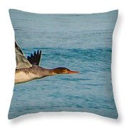 Red Breasted Merganser In Flight Throw Pillow