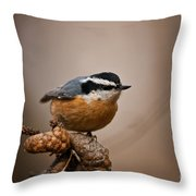 Red-breasted Nuthatch Pictures 36 Throw Pillow