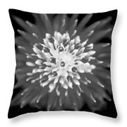 Red Bromeliad Painted Bw   Throw Pillow