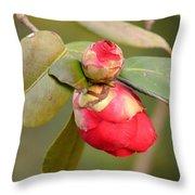 Red Camelia Buds Throw Pillow