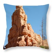 Red Canyon Rock Formation Throw Pillow