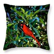 Red Cardinal 1 Throw Pillow