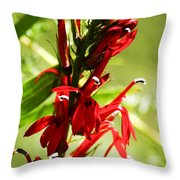 Red Cardinal Flower Throw Pillow