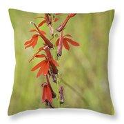 Red Cardinal Flower Throw Pillow