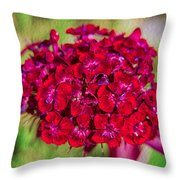 Red Carnations Throw Pillow by Omaste Witkowski