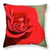 Red Carpet Rose Throw Pillow