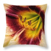 Red-centered Daylily With Raindrops Throw Pillow