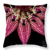 Red Chimney Throw Pillow