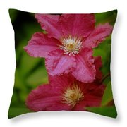 Red Clematis Flowers Throw Pillow