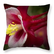 Red Columbine Flower Throw Pillow