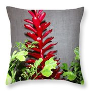Red Cone Ginger - No 1 Throw Pillow